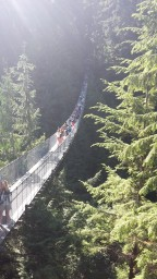 I'm on Top of the World…Literally…. Part 2. Bringing it Back Down to Earth, One Suspension Bridge at A Time